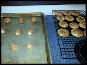 {snicker doodle cookies again}